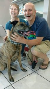 """""""Cinnamon"""" is an 8 year old brindle Pittie mix. She is an outgoing friendly girl who loves to give kisses."""