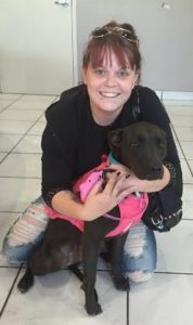 """""""Kona"""" is a new patient of ours who loves showing off her pink harness with her owner Stephanie."""